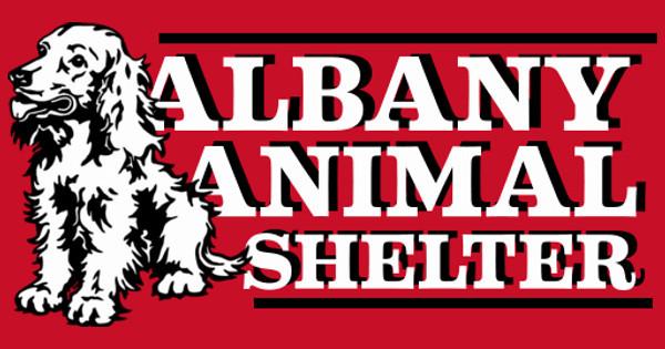 Albany Animal Shelter