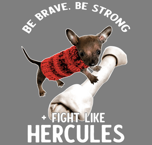 Hercules is our Hero! shirt design - zoomed