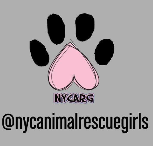 NYCARG Sweatshirt Fundraiser shirt design - zoomed