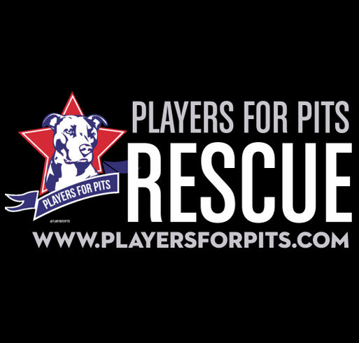 Players for Pits Medical Fundraiser shirt design - zoomed