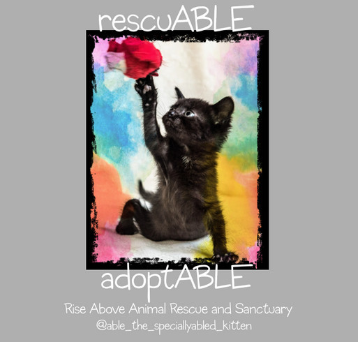 Able - the specially-abled kitten shirt design - zoomed