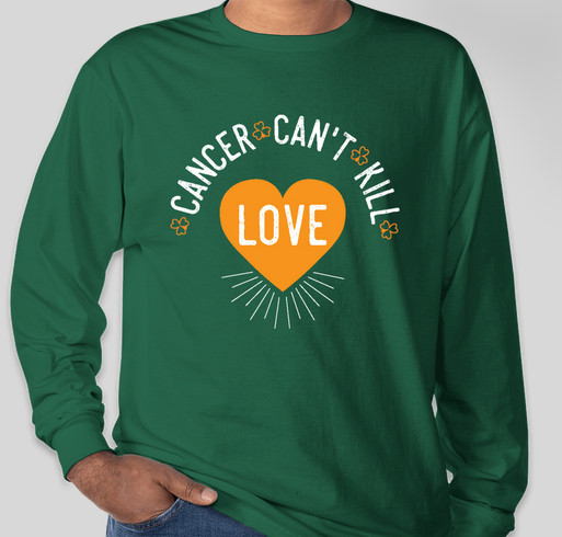 Hanes ComfortSoft® Long Sleeve Tagless T-shirt