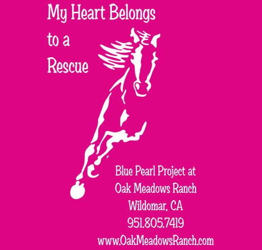Blue Pearl Project at Oak Meadows Ranch Horse Rescue Youth T Shirt Fundraiser shirt design - zoomed