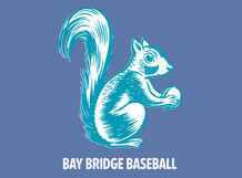 Bay Bridge Baseball