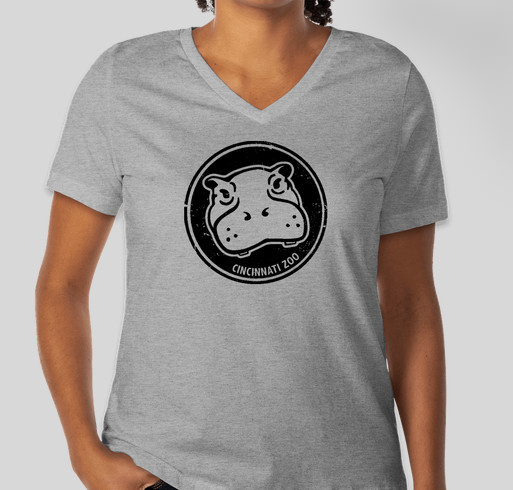 Bella Ladies V-Neck T-shirt