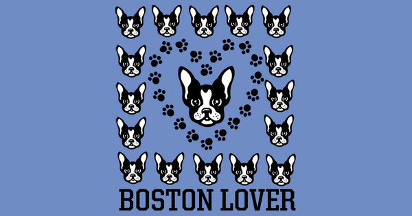 Boston Lover