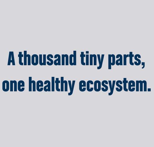 Sea Otter Awareness Week 2021: Ecosystem Mosaic shirt design - zoomed