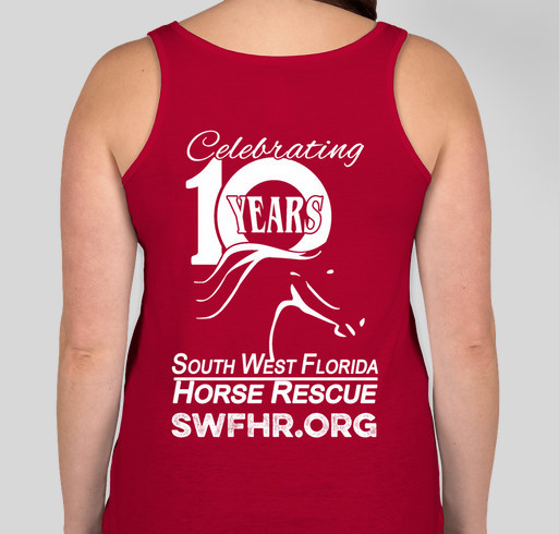 Celebrate 10 years with us! Fundraiser - unisex shirt design - back