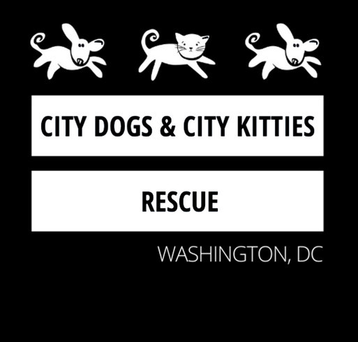 CDCK Dog-Cat-Dog Flag Zip Hoodies shirt design - zoomed
