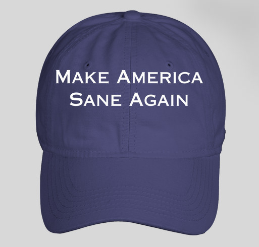 Make America Sane Again Fundraiser - unisex shirt design - front
