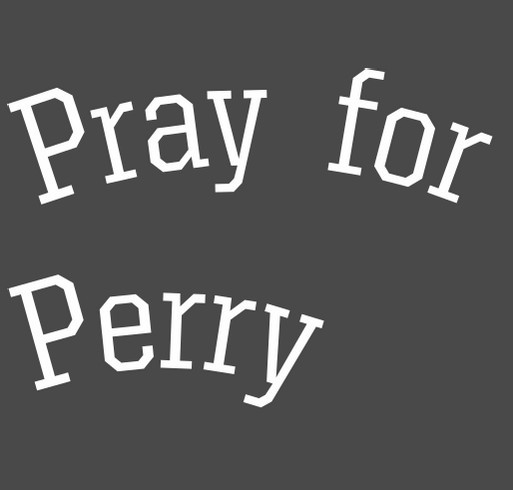 Pray for Perry shirt design - zoomed