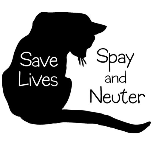 Save homeless cats - Spay & Neuter shirt design - zoomed