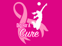 Dig For A Cure