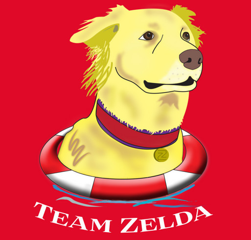 Help Zelda Help Other Sick Pets shirt design - zoomed
