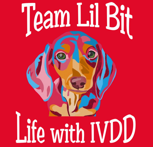 Team Lil Bit, Life with IVDD, Emergency Back Surgery Fund