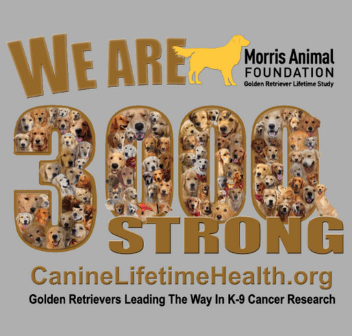Golden Retriever Lifetime Study/Morris Animal Foundation shirt design - zoomed