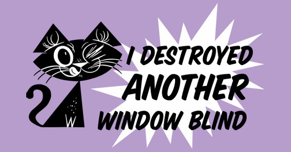 I Destroyed Another Window Blind