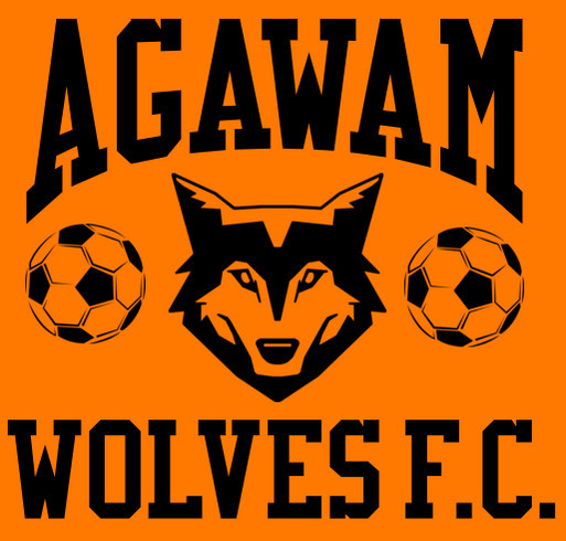 a95c8d3159f Agawam Wolves F.C. Custom Ink Fundraising