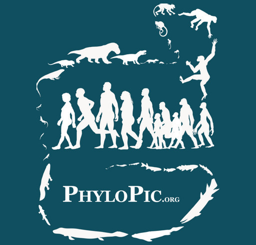 PhyloPic - free silhouettes of life forms shirt design - zoomed