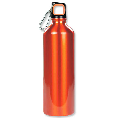 25 oz. Aluminum Water Bottle